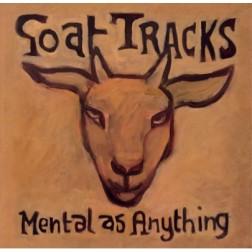 Goat Tracks in My Sandpit (2016)